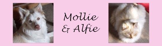 mollieandalfie4